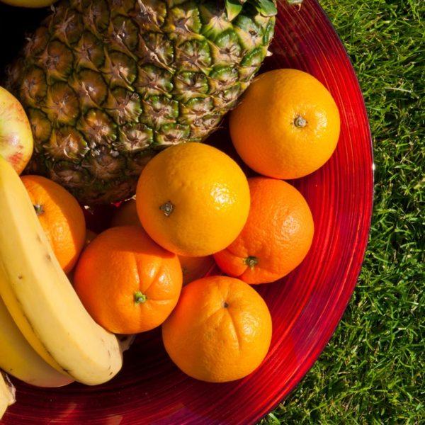 Corso di Nutrizione Sportiva - Come Diventare Nutrizionista Sportivo